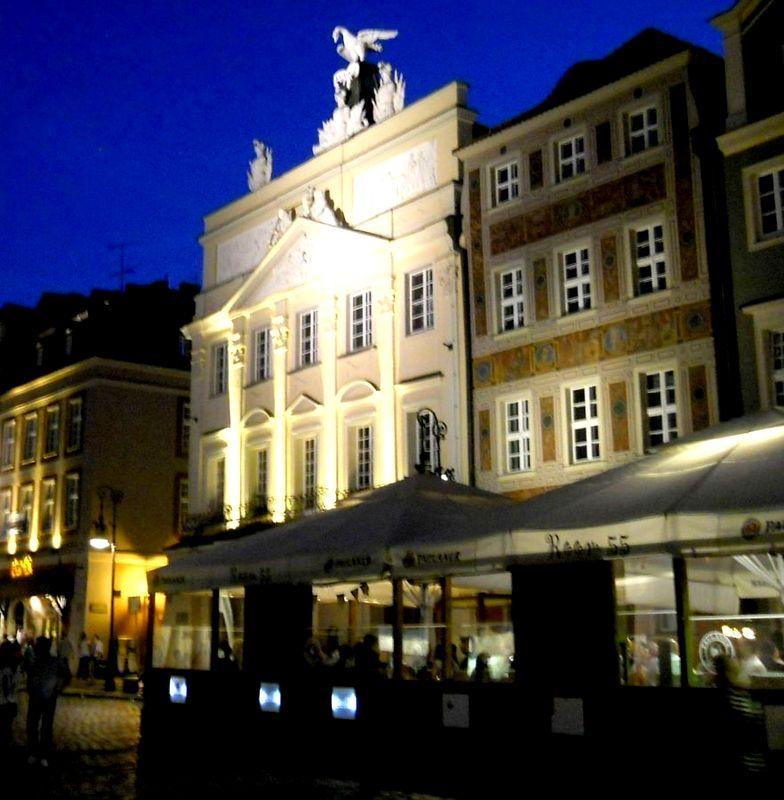 35 Pałac Działyńskich Kopia