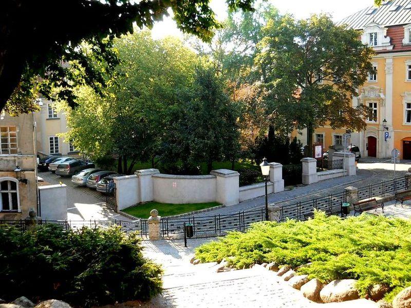 Pałac Działyńskich ogród