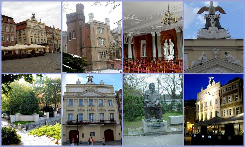 Pałac Działyńskich0