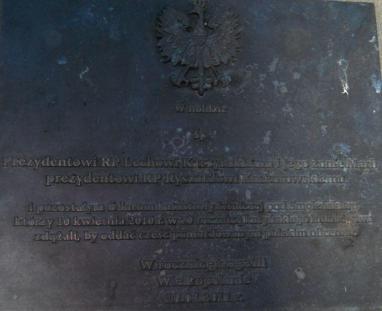 48f  Z. Cesarski w.