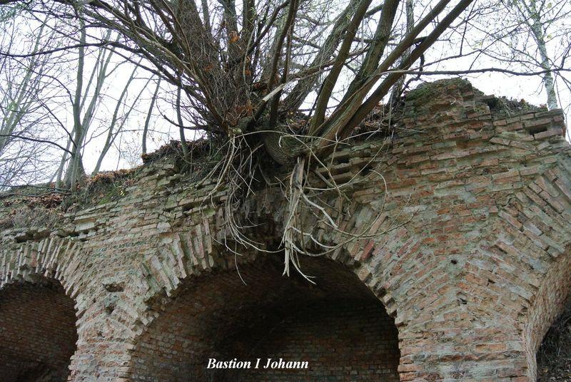 Bastion I Johann1