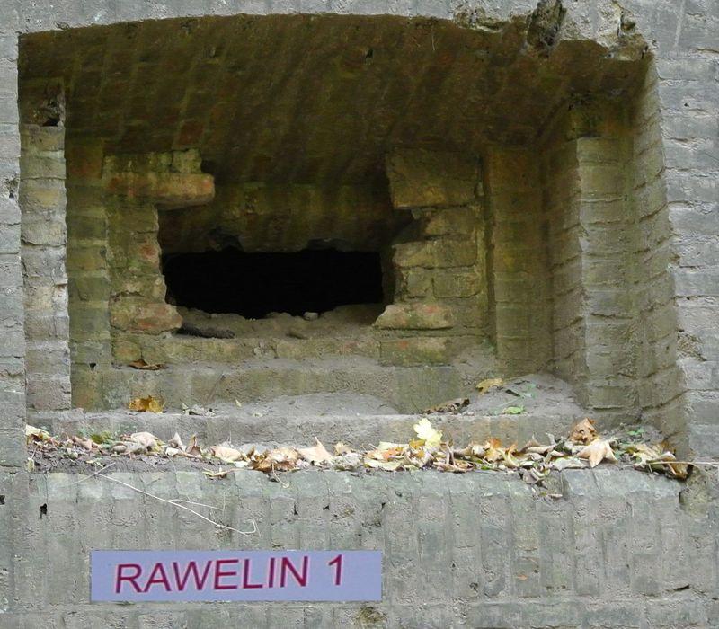 raweli Ie