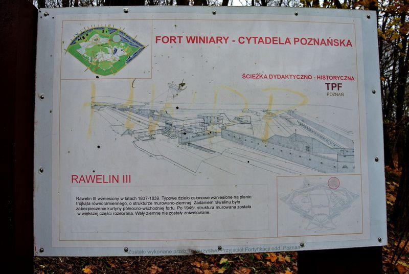 rawelin IIIa