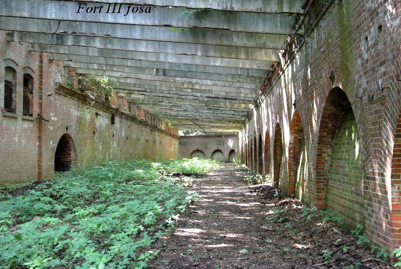 Fort III fosa