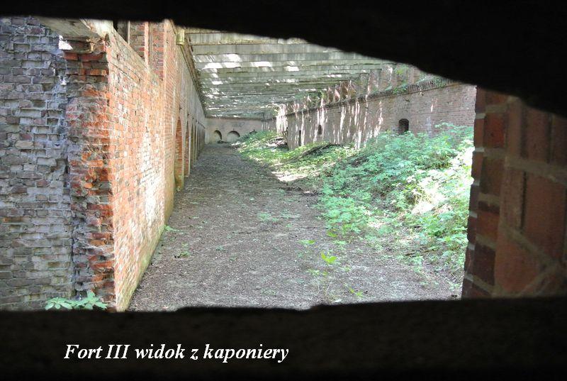 Fort III widok z kaponiery