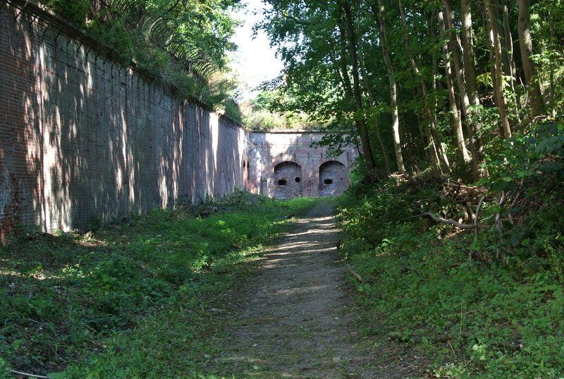 Fort Va -  010