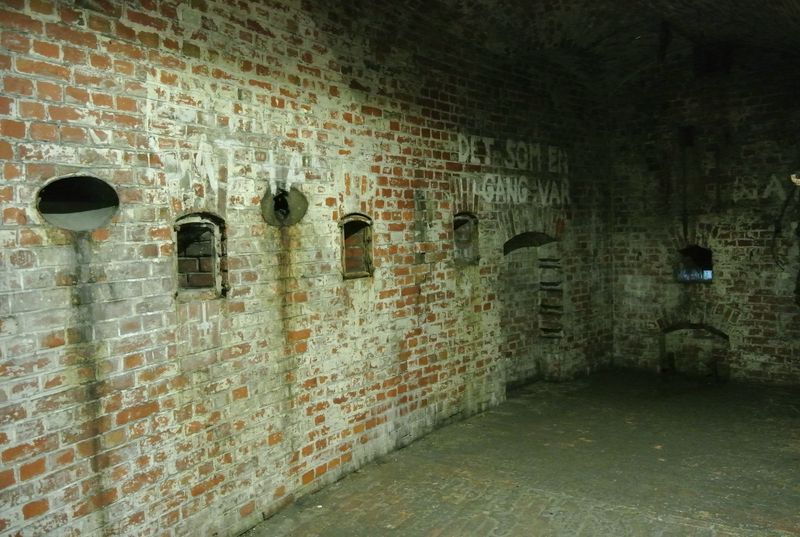 fort III - 24