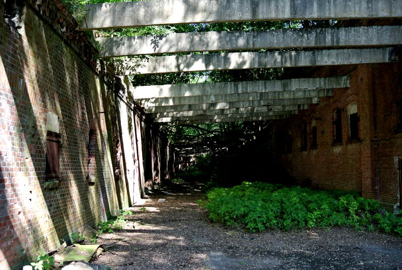 fort III - 8