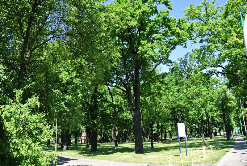 Park Manitusa 018