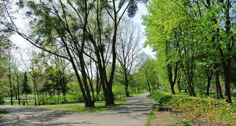 Park Wodziczki d