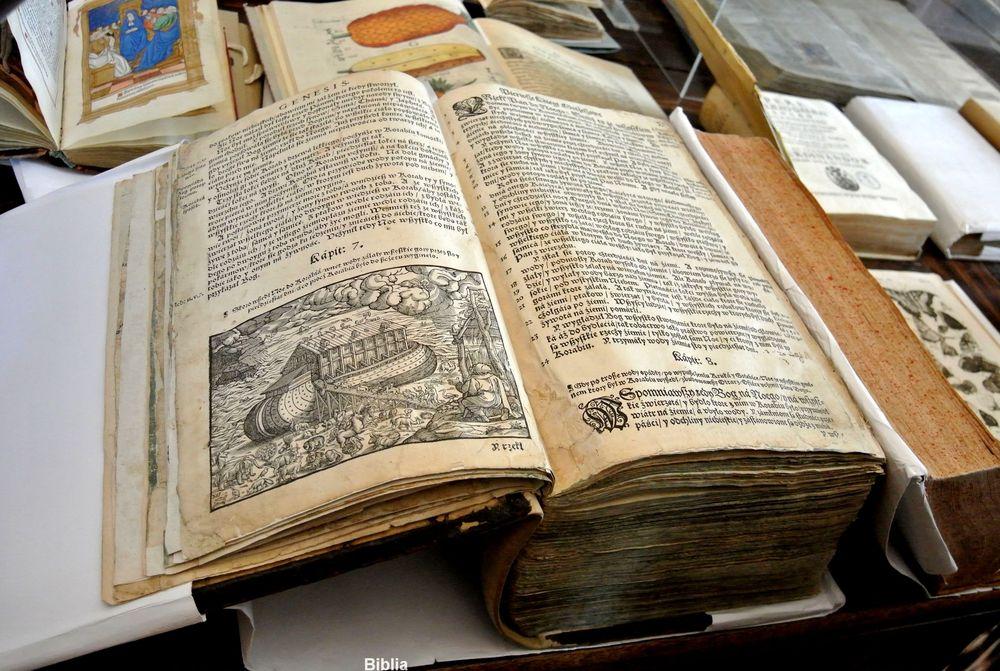 Biblioteka kórnicka 057