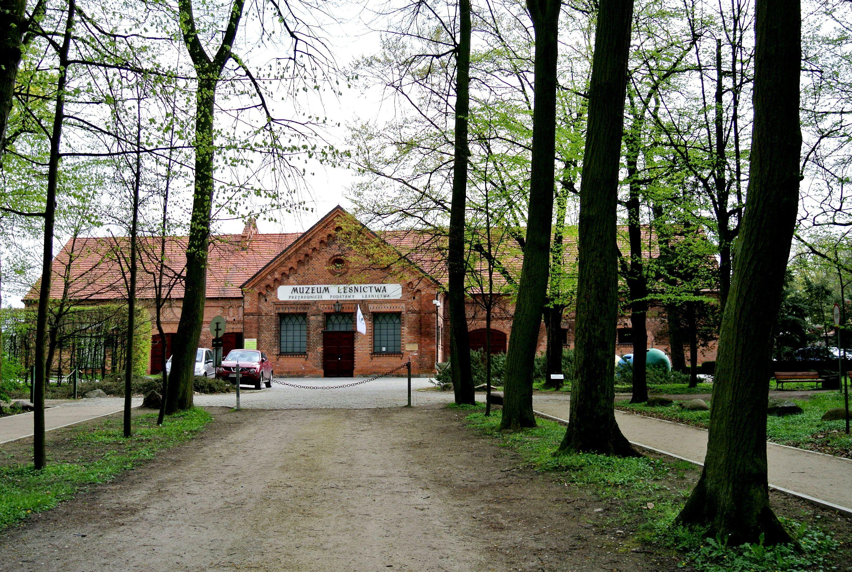 Gołuchów 109
